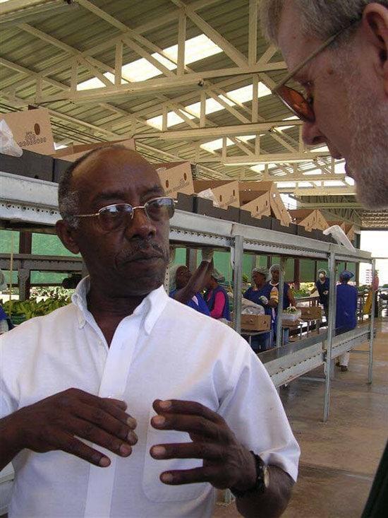 Debebe Daidone: Agricultor orgánico