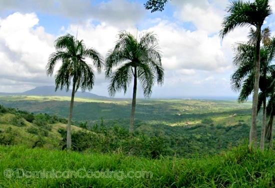 El visitante ocasional pensaría que por la República Dominicana ser un país tan pequeño tendríamos una cocina homogénea. Hasta cierto punto esto es correcto; sin embargo, para la mayoría de los locales es obvio que hay diferencias entre las regiones del país.
