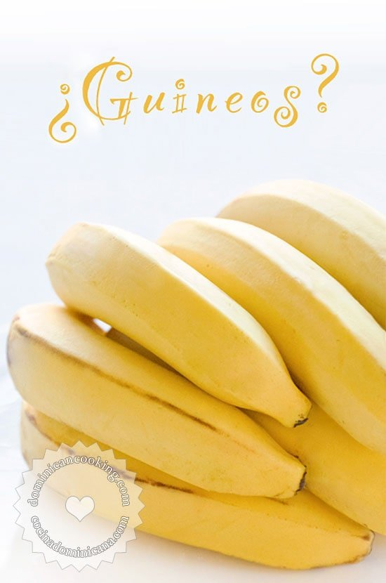 """¿Por Qué a las Bananas les Llamamos """"Guineos"""" en la Rep. Dominicana?"""